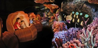 The Seas with Nemo & Friends: Atrações do Epcot