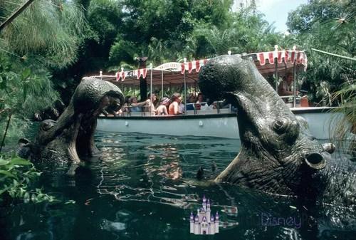 Jungle Cruise Partiu Disney Parks
