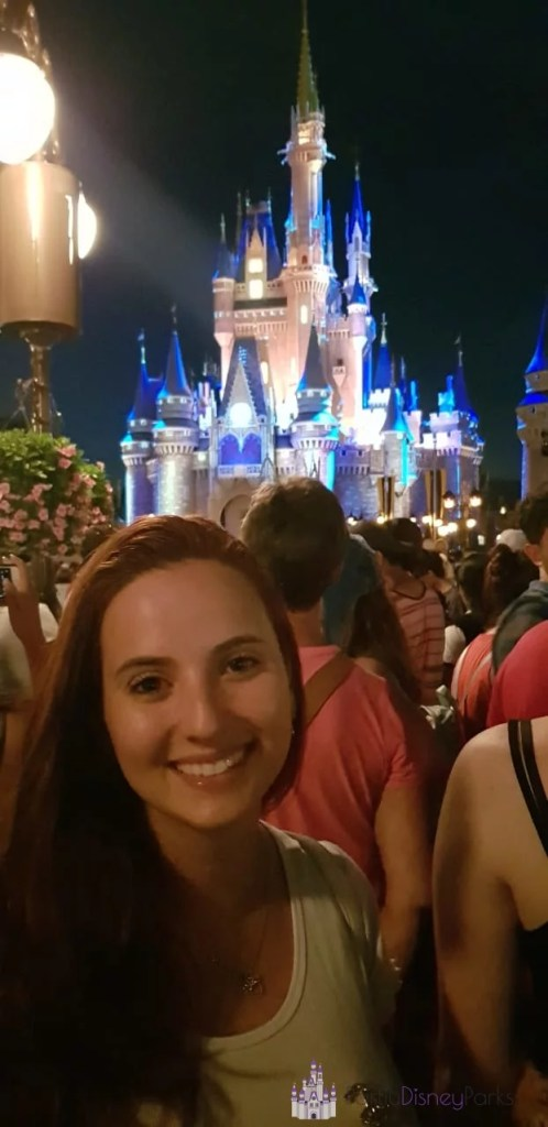 Happily Ever After - Partiu Disney Parks