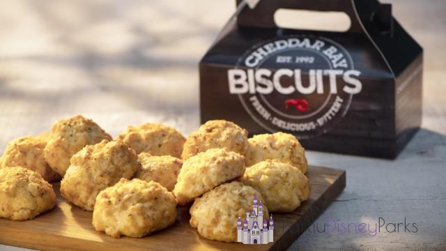 Cheddar Bay Biscuits Entrada Red Lobster