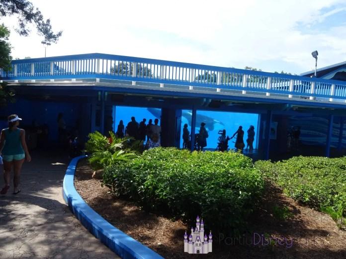 Underwater-Viewing-Sea-World