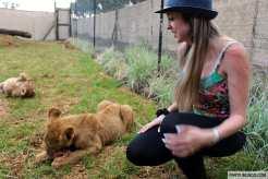 Lion and Safari Park 24