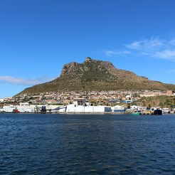 Visiting the seals at Duiker Island, Cape Town 6