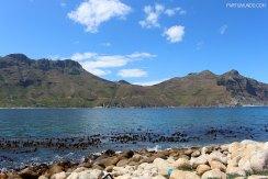 Scenic Route - Cape Town 5