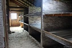 Visitando Auschwitz 18