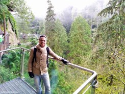 Parque Capilano Suspension Bridge 20