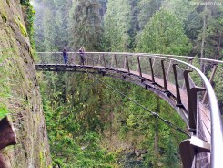 Parque Capilano Suspension Bridge 8