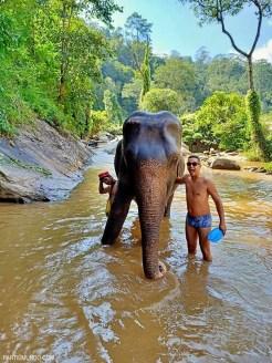 Santuário dos elefantes 28