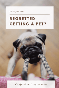 """regret getting pets"""