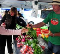 Buying fresh vegetables at farmers market