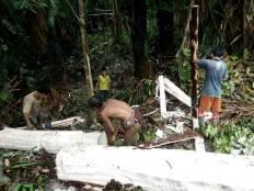 Life Experience Mentawai