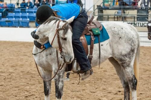 kahleesi horse hug