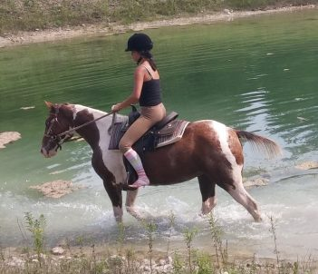 sparkle-horse