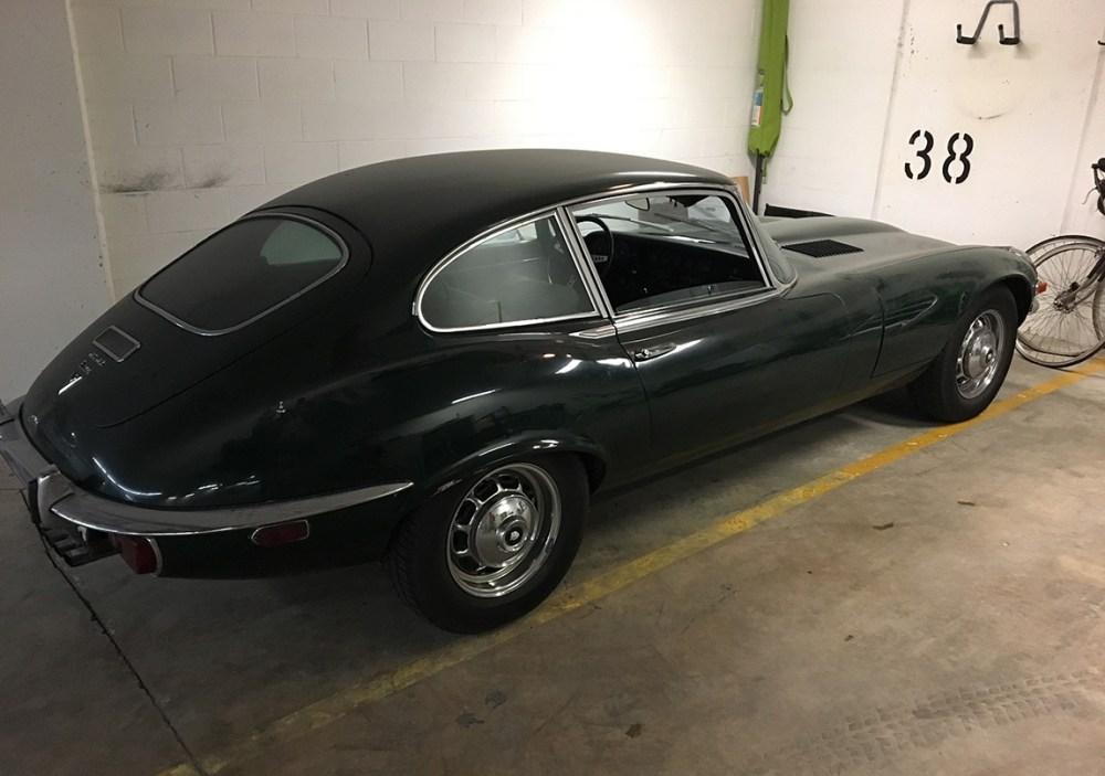 Jaguar-web-8