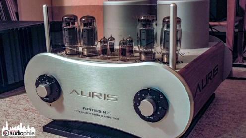 Auris-Audio-Fortissimo-DSCN1781