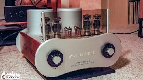 Auris-Audio-Fortissimo-DSCN1791