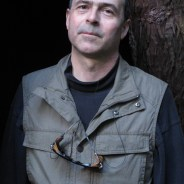 David Under the redwoods