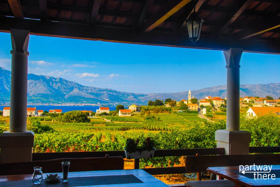 Vineyards on Korcula, Croatia