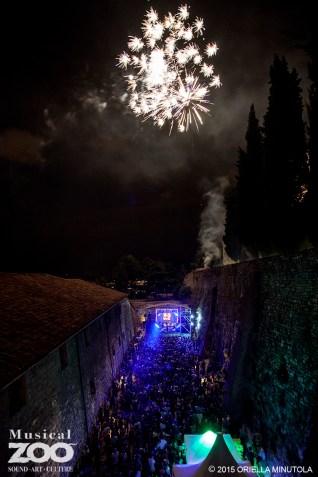 MZOO fireworks