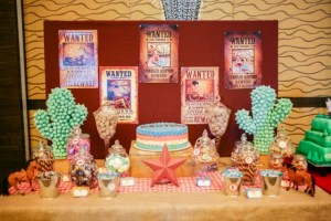 Ashton's Cowboy Themed Party – 1st Birthday