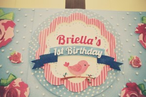 Briella's Shabby Chic Themed Party – 1st Birthday