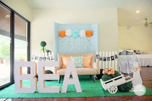 Bea's Pat the Bunny Themed Party – 1st Birthday