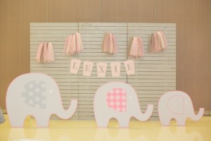 Lexie's Baby Elephant and Tutu Themed Party – 1st Birthday