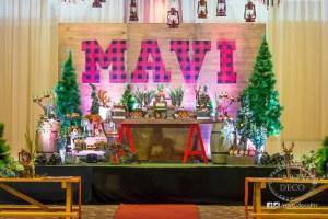 Mavi's Lumberjack Themed Party – 1st Birthday