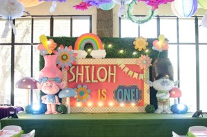 Shiloh's Trolls Themed Party – 1st Birthday