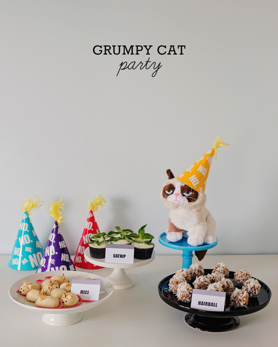 Throw A Party For Your Favorite Grumpy Cat Fan Party Ideas