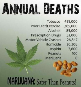 marijuana statistics: safer peanuts