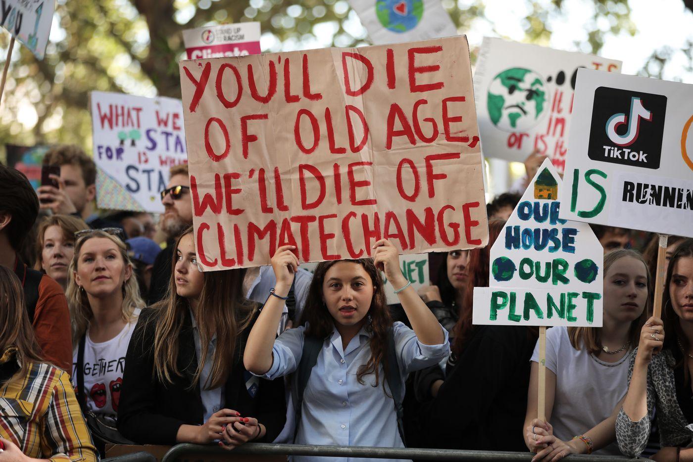 democratic platform, environment, greenpeace usa