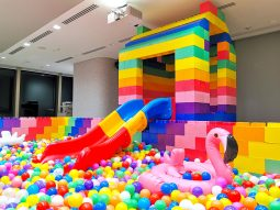 Lego House with Slide Rental