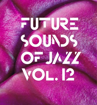 FUTURE SOUNDS OF JAZZ Vol. 12 - compiled by Michael Reinboth -