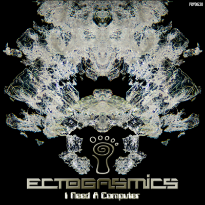 Ectogasmics - I Need a Computer - prvdg30 - featured