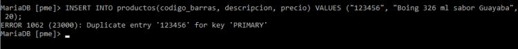 Error de clave duplicada al insertar registro repetido
