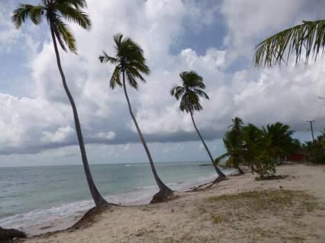 fecha ideal para viajar al Caribe
