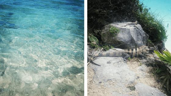 ranking 5 mejores - Playa Paraíso