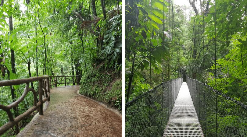 Los impresionantes paisajes del parque de puentes colgantes Místico Arenal