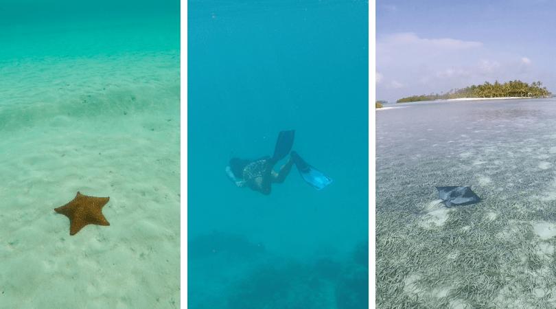 Agustín sabe exactamente donde llevarte para que disfrutes ese mar perfecto