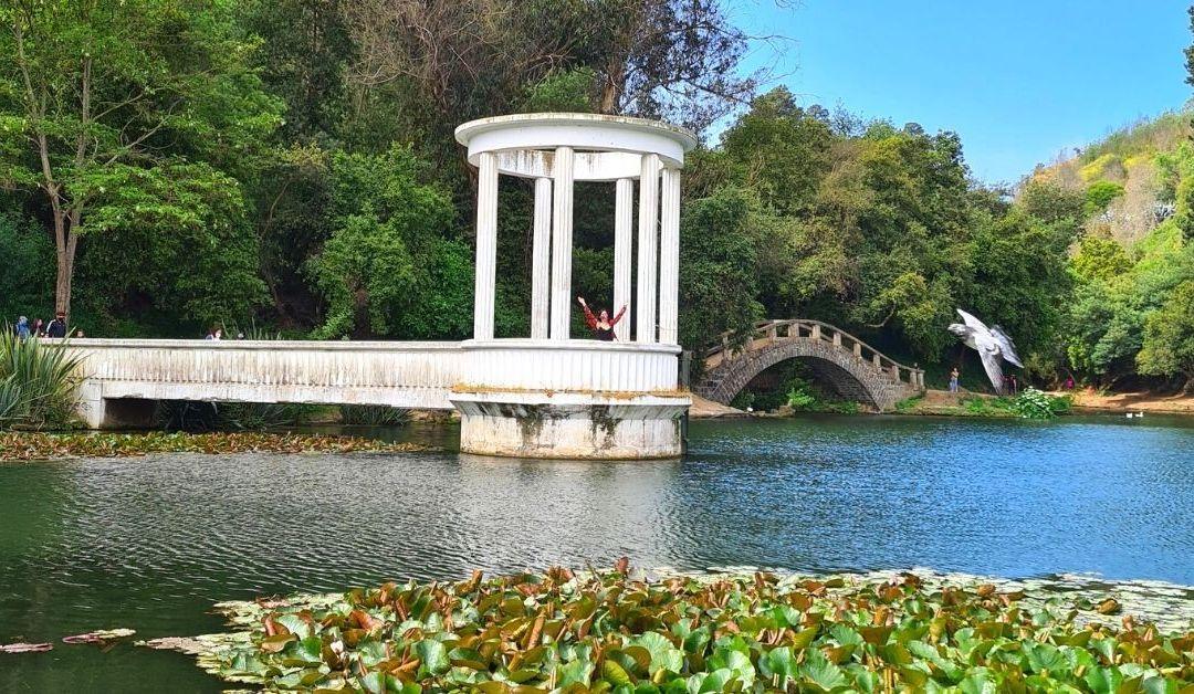 Visitar el Jardín Botánico de Viña desde fase 2: lo que debes saber