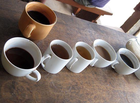 """Geltoname puodelyje - """"ta"""" kava už kosminę 2 EUR kainą. Baltuose puodeliuose - nemokami gėrimai ragavimui - įvairios kavos ir arbatos. Visa tai gavome apsilankę vietiniame ūkelyje Balio saloje."""