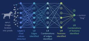 IA comment trouver le bon réseau neuronal ?