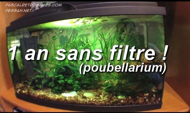 aquarium 1 an sans filtre