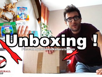 Unboxing shrimpsforall.fr