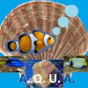 avatar for AQUA