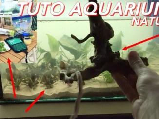 fais toi un nano aquarium naturel