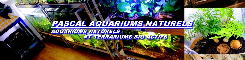 cropped-pascal-aquarium-naturels-1.jpg