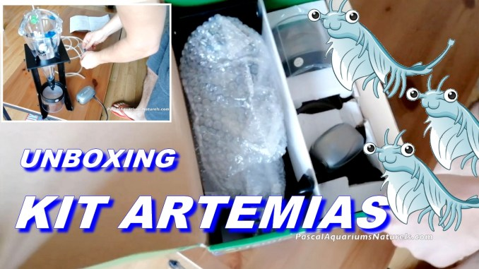 artemia unboxing kit
