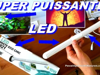 led tunze